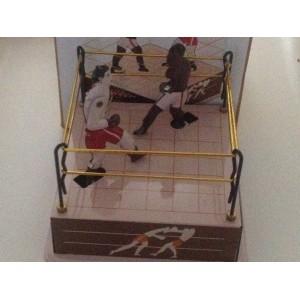 Joueurs de boxe sur un ring